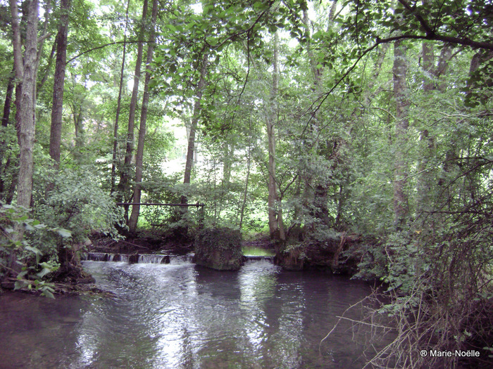 Vallée du Guiel 20100906_016