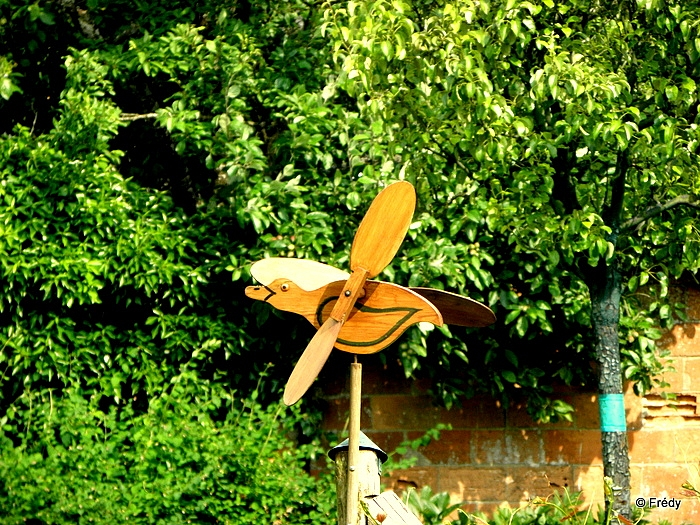 Rugles, ferme de Messey 20130627_019