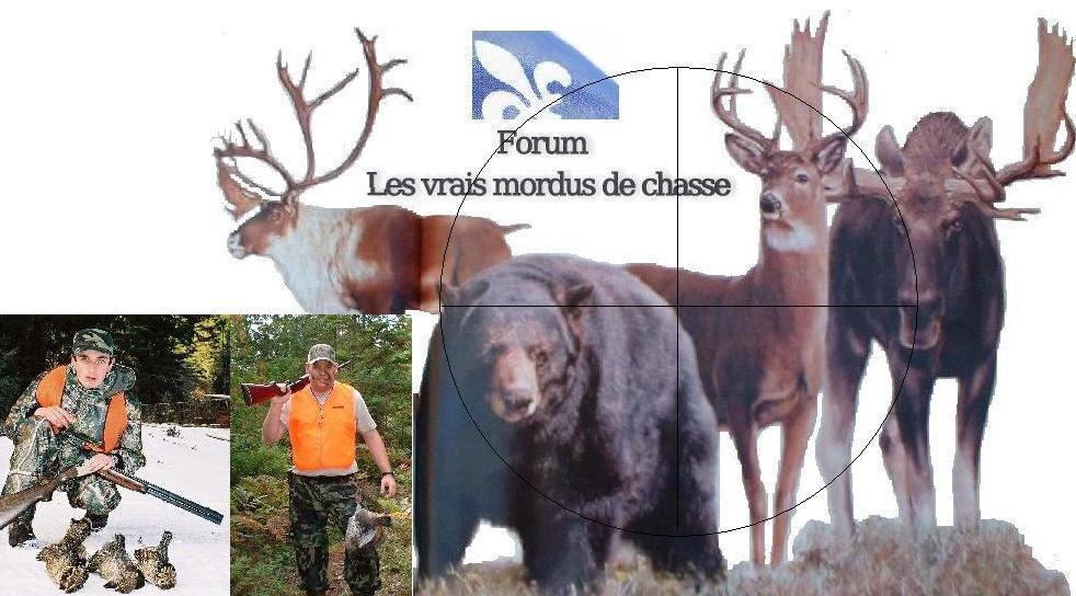 Forum les vrais mordus de chasse