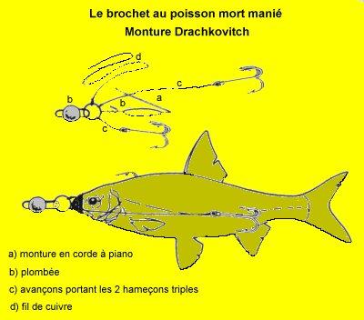 La pêche au Mort manié [Déscription] Montbrochdracko