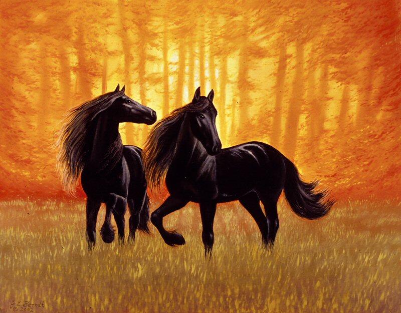 les chevaux.. - Page 15 Bfw9xk2l