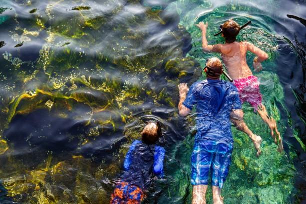 [Walt Disney World Resort] Parcs aquatiques: Disney's Blizzard Beach et Disney's Typhoon Lagoon - Page 2 TLG860709-613x408