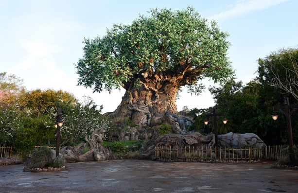 [Disney's Animal Kingdom] Nouveaux divertissements nocturnes: Rivers of Light, Tree of life Awakenings, The Jungle Book Alive with Magic ... - Page 5 Trelee837011-613x397