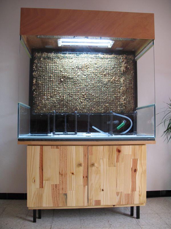 Aquaterrarium de Patrice_B - Page 3 Aquaterra_mur_vegetal_1