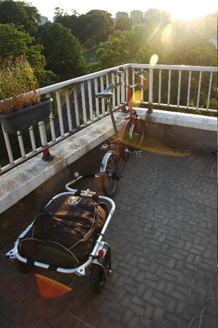 Bikes2fold.com Carry Freedom made in Swissland CarryDSC_0386