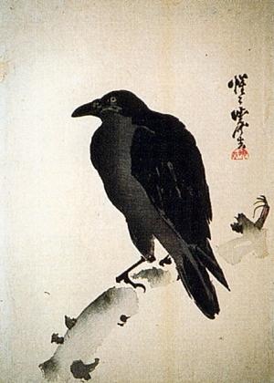 Oiseau songeur Corbeau