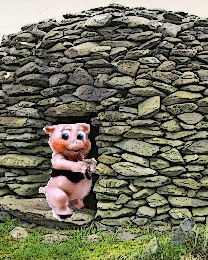 Futur domicile Porc-hutte