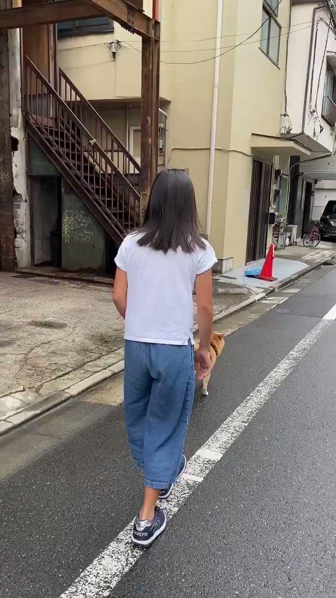 Topics tagged under 柴犬 on 紀由屋分享坊 EJU1DcRWoiBT8aa9