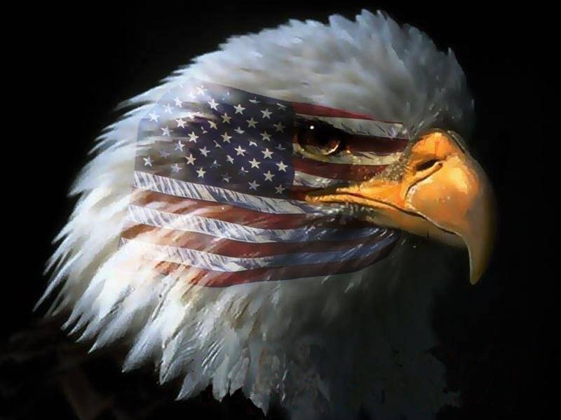 Happy Independence Day Eagle-with-flag-over-eye