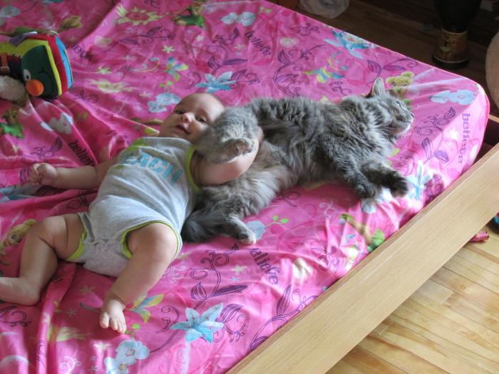 Enfants, grossesse, bibous et photos - Page 64 Bidouche