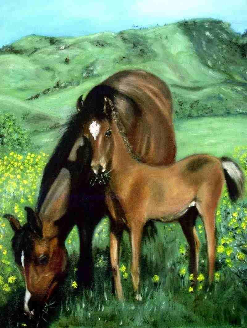 Artistes cantaliens DR-Les-chevaux