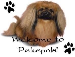 Pekepals Q & A Board