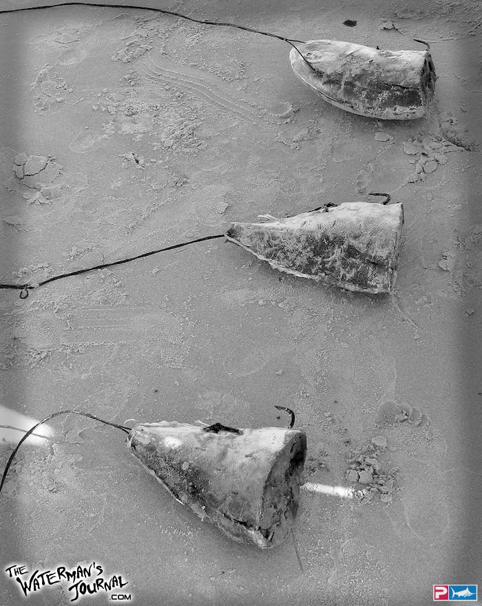 43 aparejos /armadas con anzuelo para presentar carnadas en el mar P09140903