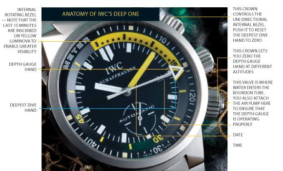 deep one ... (IWC inside) Deep_one_anatomy