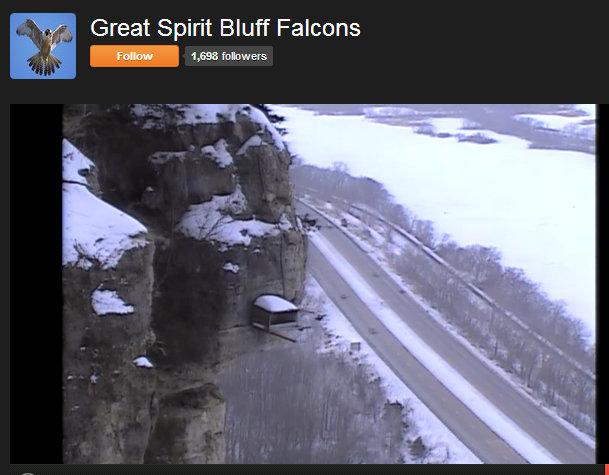 Great Spirit Bluff Falcons,Travis & Michell. Minnesota 2014 1-Przechwytywaniewtrybiepenoekranowym2014-02-05224926