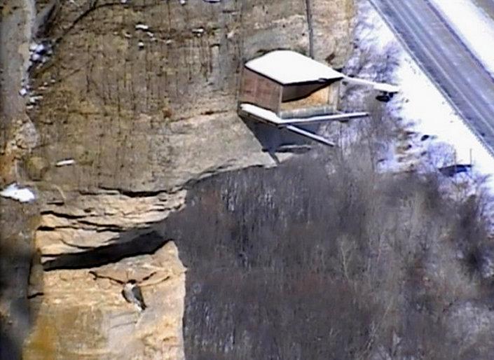 Great Spirit Bluff Falcons,Travis & Michell. Minnesota 2014 1-Przechwytywaniewtrybiepenoekranowym2014-02-22200835