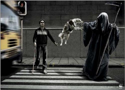 Imagenes curiosas - Página 2 Wwf_posters_animal_environment_3