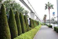 [Tokyo Disney Resort] Guide des Hôtels Bayside-st_TDH006p