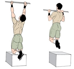 Muscle-Up i miei consigli Pull%20Up%20(Assisted)%20
