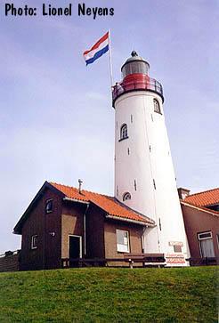 un phare  - ajonc - 17 février trouvé par Martine Urk