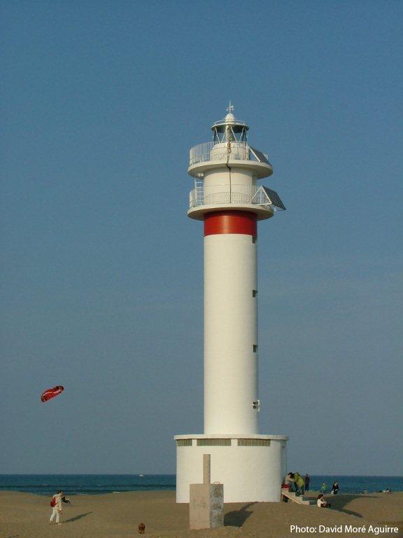 un phare  - ajonc - 17 février trouvé par Martine Fangar1