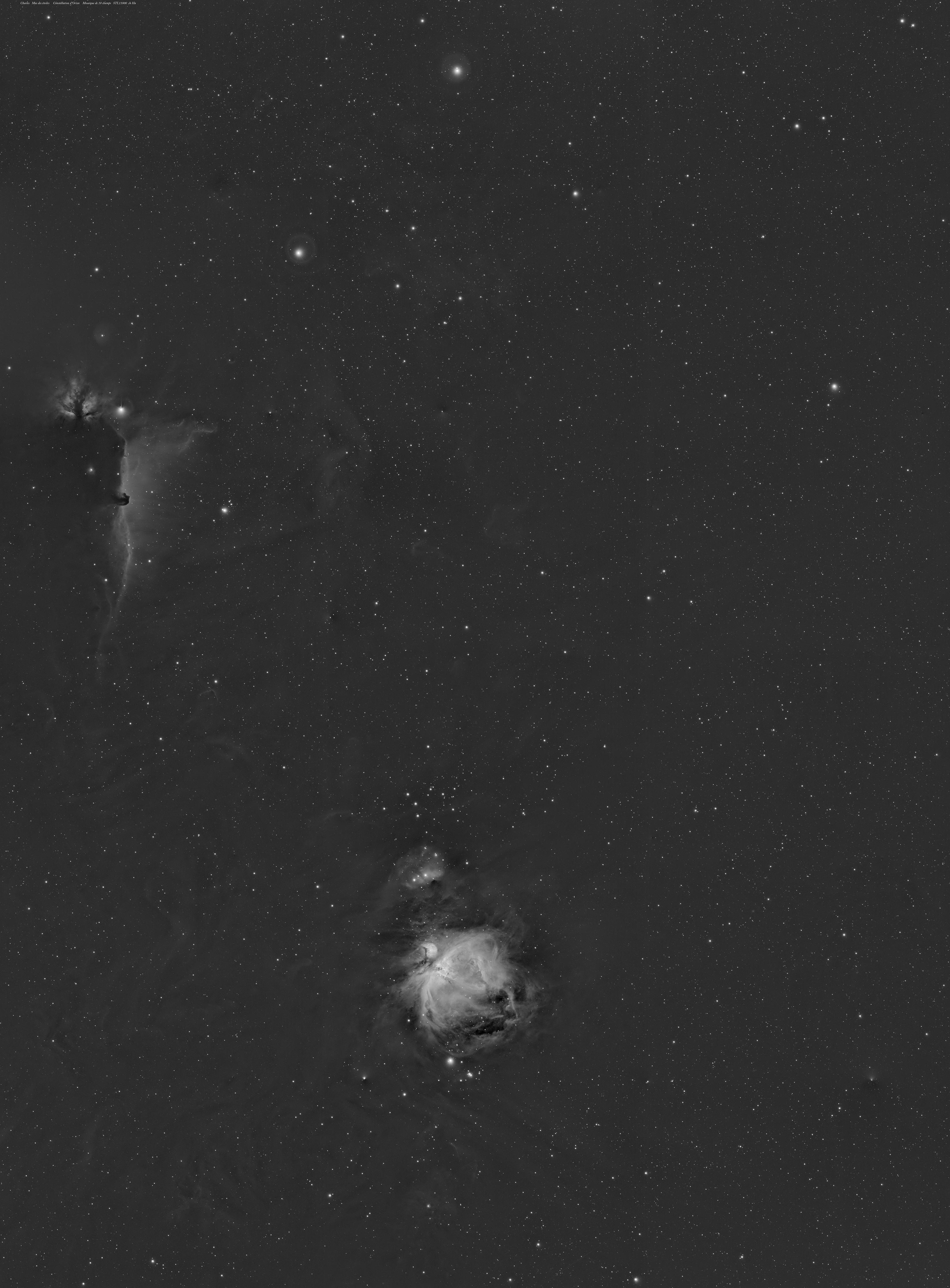 Quelque part dans Orion  MosaicOrion30pc