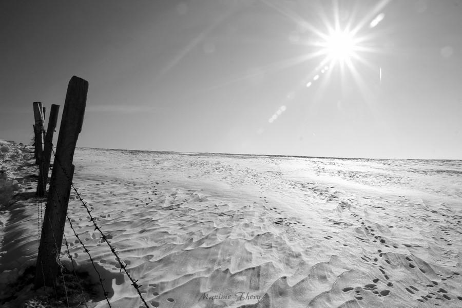 Vague de froid février 2012 IMG_5386