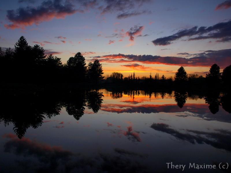 Tel un miroir dans l'eau  10nov2011PB104444