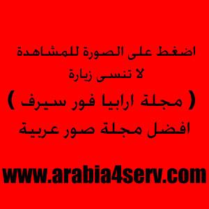 موضوع مصور رائع عن برج القاهرة I3768_pp3