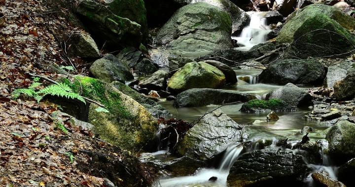 La mujer de agua de Gualba 810ed942fbad4fd2e4b24da8abb6be5e_720x560
