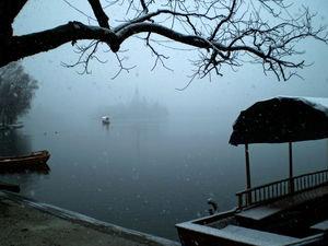En el río... - Página 2 2145997-Lago-de-Bled-con-niebla-0