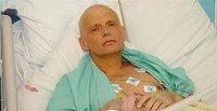 The Kremlin Pedophile Litvinenko