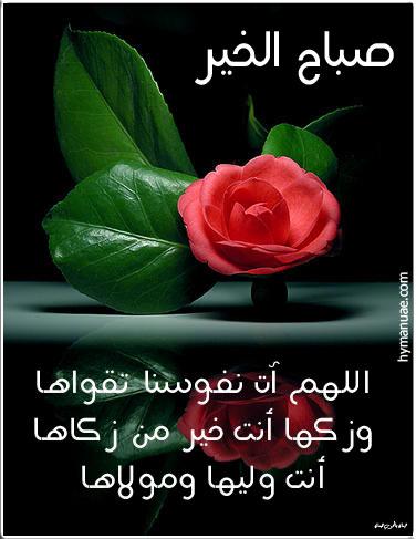 صباح الخير  - صفحة 3 Images-2e189c5e8154