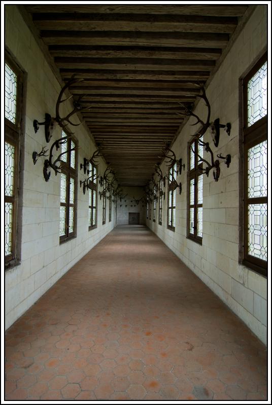 Le château de Chambord K5A16595