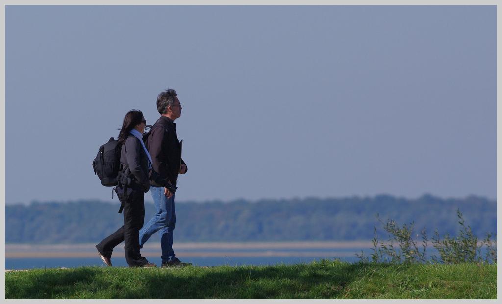 Rencontre Lac du Der 9 et 10 octobre 2010 (Sortie annuelle) - III - Page 19 K7014509