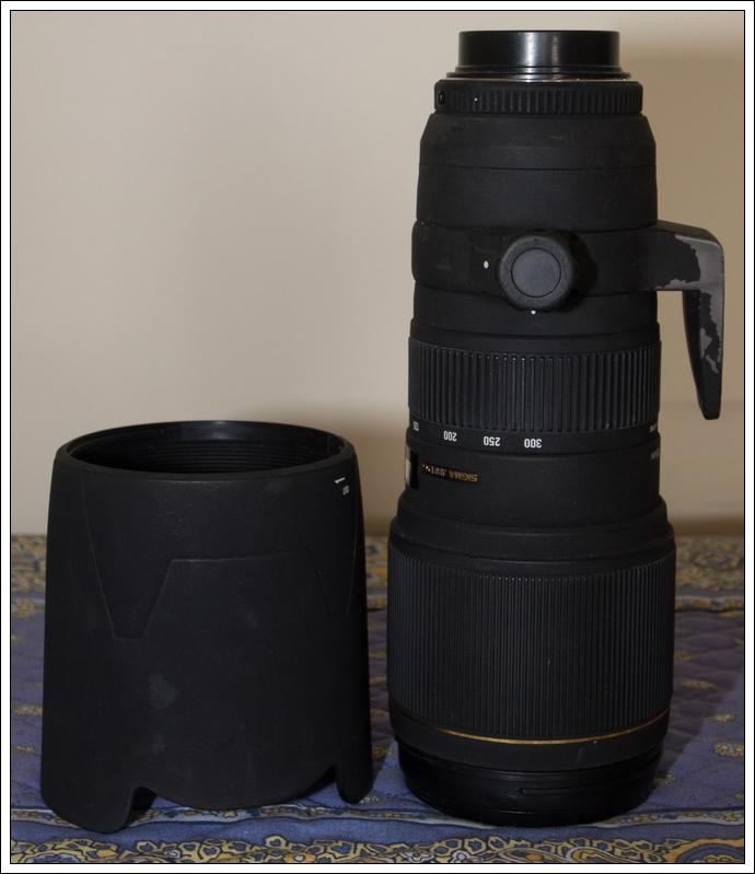 Vendu Sigma Sigma 100-300mm F4 EX APO + teleconvertisseur x1.4 (vendu) OMD03453