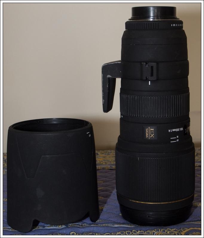 Vendu Sigma Sigma 100-300mm F4 EX APO + teleconvertisseur x1.4 (vendu) OMD03455