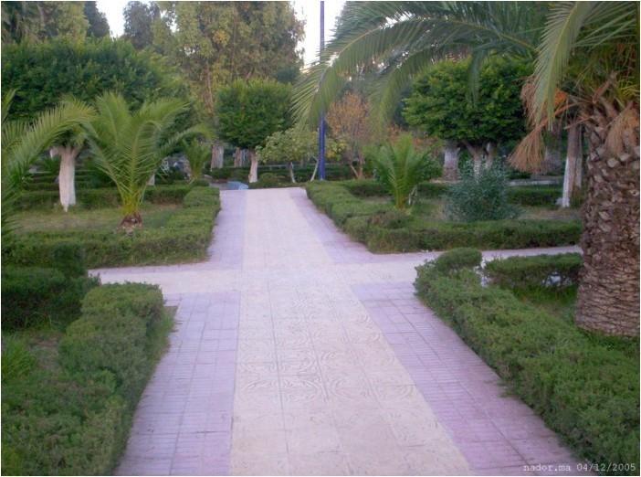 بلاد المغرب بالصور 000_0916_700x520