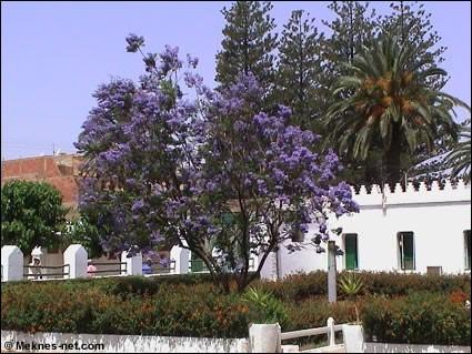 بلاد المغرب بالصور YY0L3164108