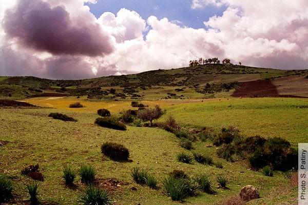 بلاد المغرب بالصور _1995_MA_004S0091