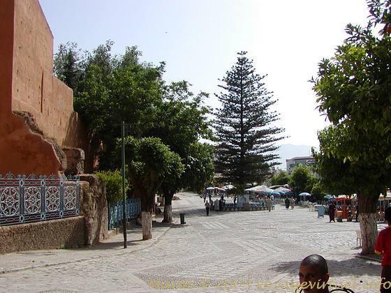بلاد المغرب بالصور Babelmedpb73163