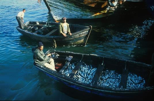 بلاد المغرب بالصور Maroc1087