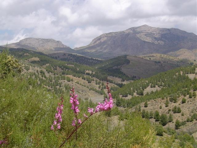 بلاد المغرب بالصور Maroc1432
