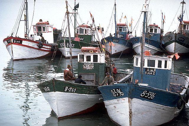 بلاد المغرب بالصور Maroc215
