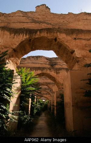 بلاد المغرب بالصور Morocco975