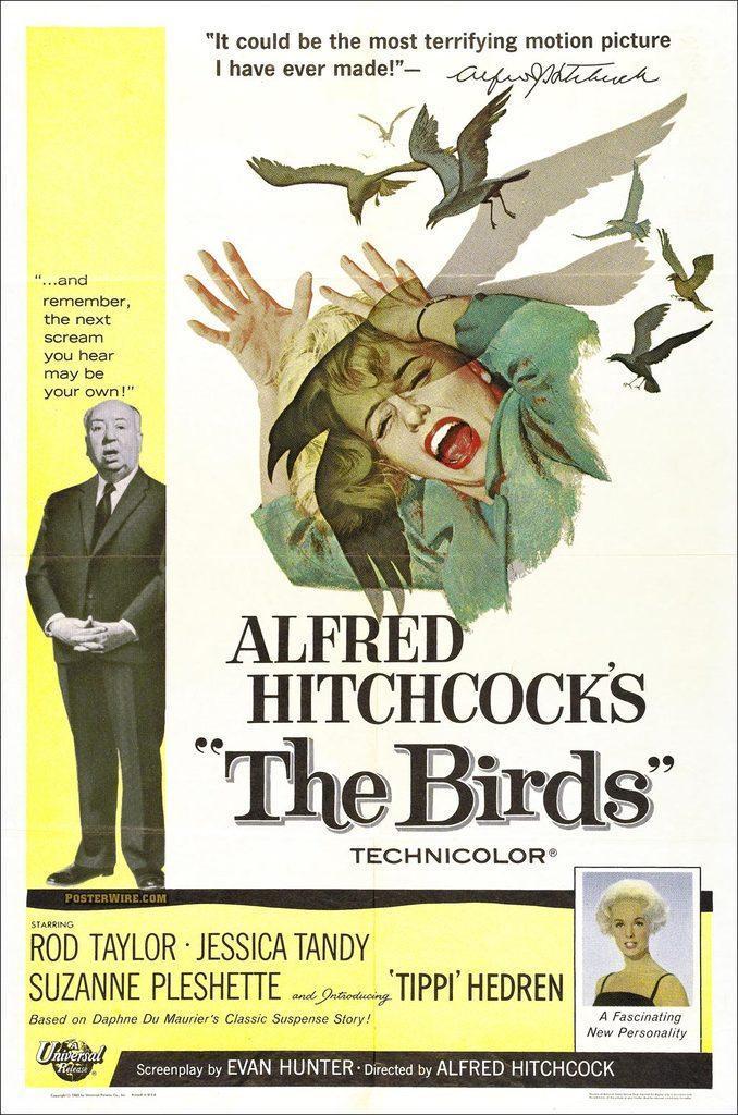 Ellas son las protas - Página 2 Alfred_hitchcock_s_the_birds-851609530-large