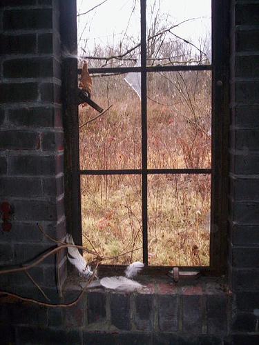 Prozori koji govore - Page 2 371122975_17a7538b28