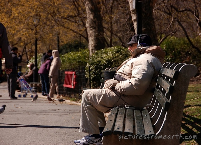 POOFness for SEPT 6: LABOR OF LOVE 94-elder-man-bench-central-park