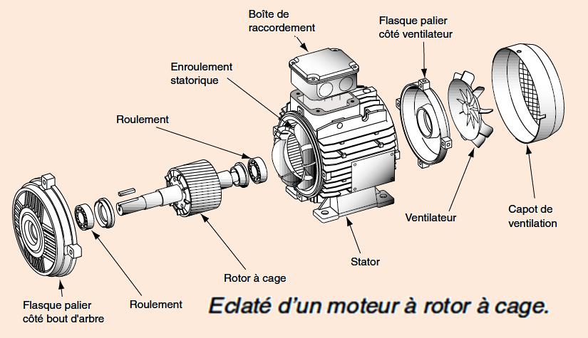 صور المحرك الكهربائي الثلاثي الطور Moteur-electrique-cage2