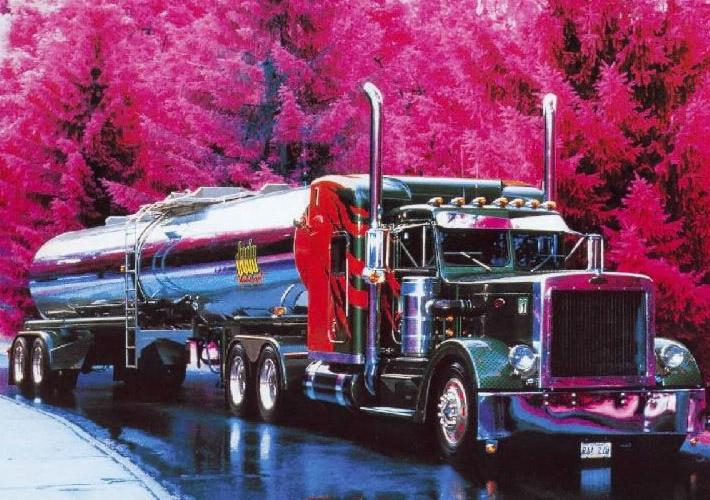 CAMIONES--TRAILERS Camiones1